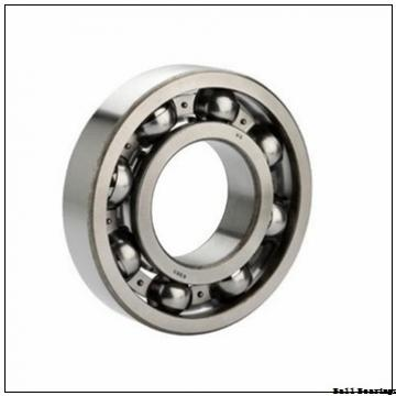 EBC 6004 2RS C3 BULK  Ball Bearings