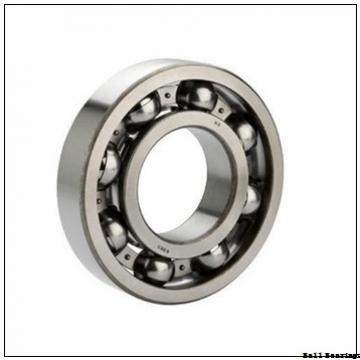 EBC 6206 2RS C3 BULK  Ball Bearings