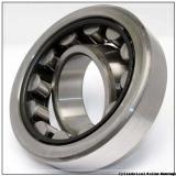 2.953 Inch | 75 Millimeter x 3.504 Inch | 89.014 Millimeter x 0.984 Inch | 25 Millimeter  LINK BELT MR1215  Cylindrical Roller Bearings
